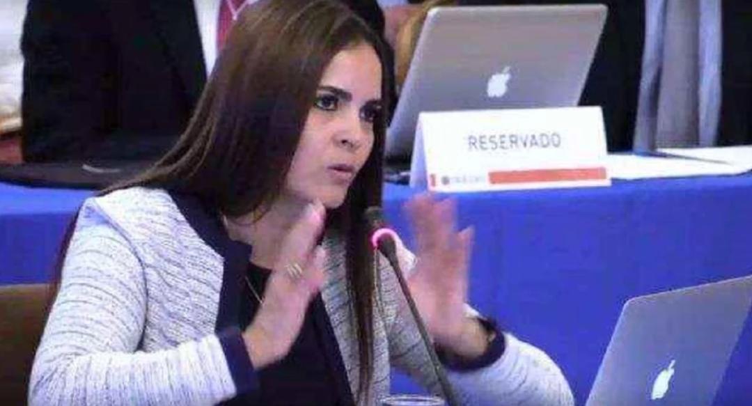 Abogada dice en la OEA que el primer trimestre del año fue el más duro en Venezuela